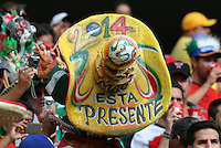 Mexican Fan's Sombrero