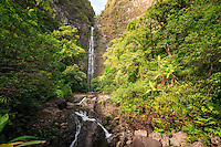 Hanakapi'ai Falls is a 300-ft. waterfall deep along Kaua'i's famed Na Pali Coast. This view shows the Hanakapi'ai Falls Trail as it leads to the cascading waterfall at the end of Hanakapi'ai Valley.
