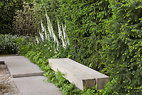 Wooden garden bench of two railroad ties, next to walkway, white Digitalis foxglove, evergreen privacy screen