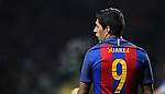 Luis Suárez of Barcelona during the Champions League match at Celtic Park, Glasgow. Picture Date: 23rd November 2016. Pic taken by Lynne Cameron/Sportimage