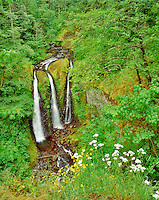 Triple Falls. Columbia River Gorge National Scenic Area, Oregon.