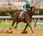 OZONE PARK, NEW YORK - APR 07: Army Mule, #2, ridden by Joe Bravo, wins the Carter Handicap on Wood Memorial Day at Aqueduct Racetrack, on April 7, 2018 in Ozone Park, New York. ( Photo by Sue Kawczynski/Eclipse Sportswire/Getty Images)