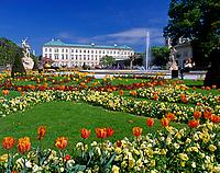 Austria (Salzburg City)