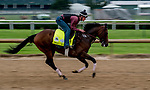 LOUISVILLE, KENTUCKY - APRIL 30: Omaha Beach, trained by Richard Mandella, exercises in preparation for the Kentucky Derby at Churchill Downs in Louisville, Kentucky on April 30, 2019. Scott Serio/Eclipse Sportswire/CSM