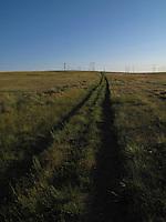 Tracks leading to the Missouri River, Montana.