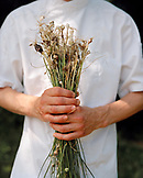 FRANCE, Arbois, Second de Cuisine YoAnn Constanty holds freshly picked wild garlic from the countryside, Jura Wine Region