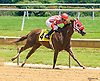 Unique Greatness winning at Delaware Park on 6/20/16