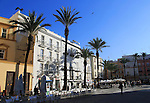 Cathedral square with restaurants and palm trees, Cadiz, Spain