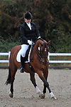 Class 8. Unaffiliated dressage. Brook Farm Training Centre. Essex. UK. 06/10/2018. ~ MANDATORY Credit Garry Bowden/Sportinpictures - NO UNAUTHORISED USE - 07837 394578