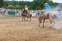 Festival West Country à Bain-de-Bretagne.<br /> Rodeo - Bull Riding : La monte du taureau