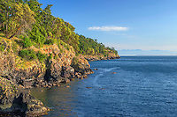 WASJ_D154 - USA, Washington, San Juan Island, Pacific madrone and Douglas fir grow above rocky shoreline along Haro Strait at San Juan County Park; Olympic Mountains rise in the distance.