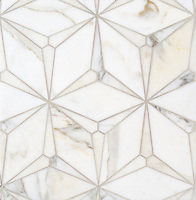 Cassiopeia, a stone waterjet mosaic, shown in polished Calacatta Gold, is part of the Semplice™ collection for New Ravenna.