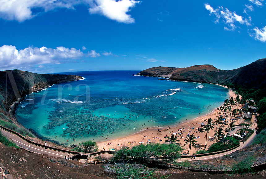 The Hanauma Bay Nature Preserve is a coastal and marine preserve located in south east Oahu. It is one of the most heavily used marine preserves in the world, drawing over one million visitors per year. coral reef beach tourists palm trees eco crater volcanic volcanoe volcano hawai