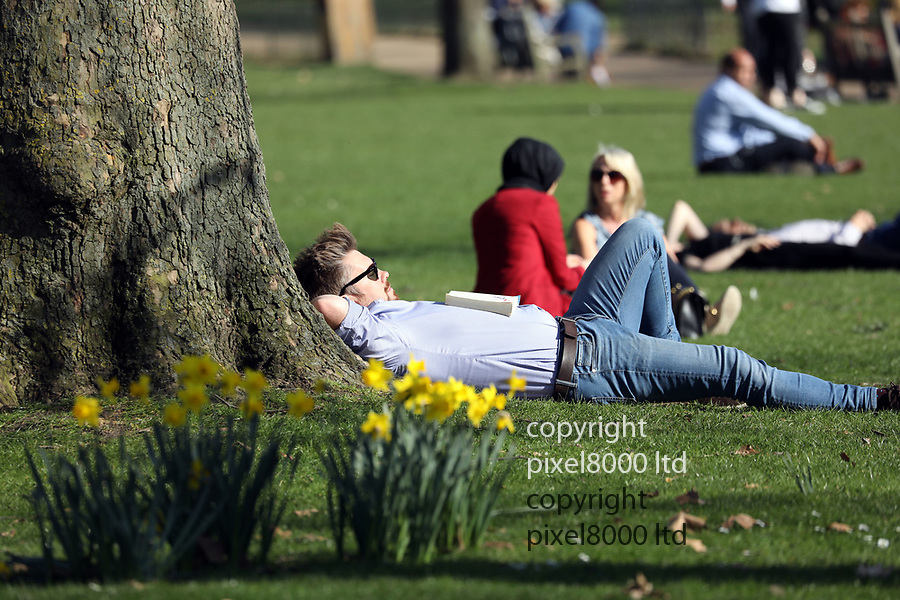 Hot Weather February 2019<br /> Daffodils in  St James' Park<br /> as people  enjoy the sunshine<br /> <br /> <br /> picture by Gavin Rodgers/ Pixel8000<br /> 27.2.19