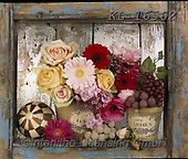 Interlitho-Alberto, FLOWERS, BLUMEN, FLORES, photos+++++,flowers,KL16562,#f#, EVERYDAY