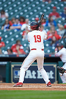 Jared Triolo (19) of the Houston Cougars at bat against the Kentucky Wildcats in game two of the 2018 Shriners Hospitals for Children College Classic at Minute Maid Park on March 2, 2018 in Houston, Texas.  The Wildcats defeated the Cougars 14-2 in 7 innings.   (Brian Westerholt/Four Seam Images)