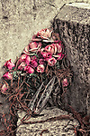 A bouquet of pink roses leaning against a headstone
