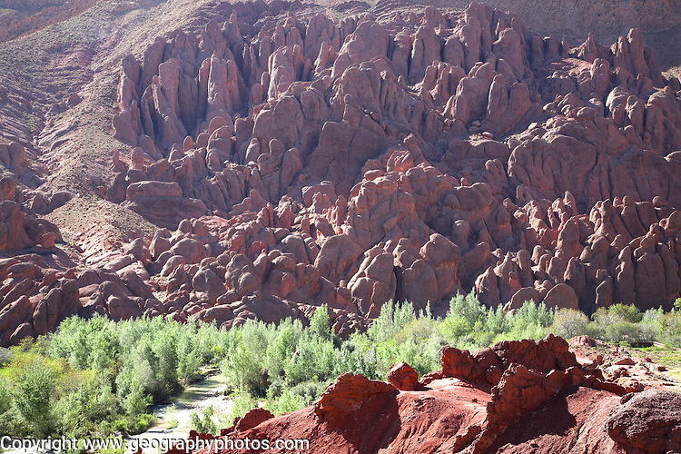Doigts de singes- monkeys' fingers- strange geological formation Dades valley, Morocco, north Africa