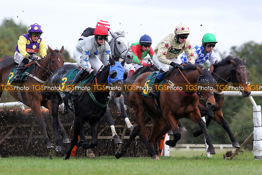 Race winner Tower ridden by Daniel Hiskett (5) in jumping action during the Cruso and Wilkin Conditional Jockeys Selling Handicap Hurdle - Horse Racing at Fakenham Racecourse, Norfolk - 26/10/12 - MANDATORY CREDIT: Gavin Ellis/TGSPHOTO - Self billing applies where appropriate - 0845 094 6026 - contact@tgsphoto.co.uk - NO UNPAID USE