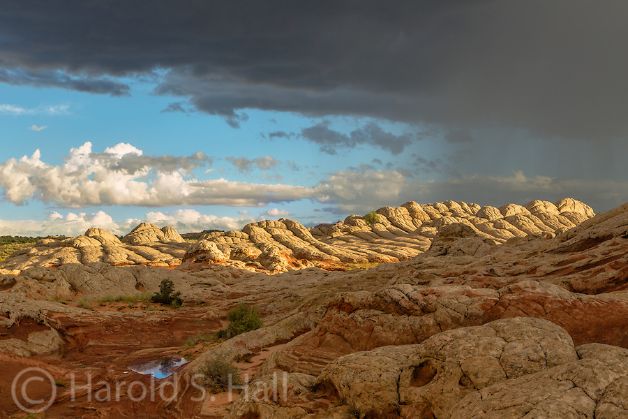 White Pocket in the Vermilion Cliffs of Northern Arizona has become a favorite photography place of refuge for me.  I'll only travel here after a rain storm.  The approaching storm or clearing offers the best opportunities for photographs.  Here the sun pops out for a last glimpse of the landscape, bathed in the golden light photographers prefer.