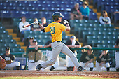 Siena Saints pinch hitter Josh DelSignore (20) during a game against the Pittsburgh Panthers on February 24, 2017 at Historic Dodgertown in Vero Beach, Florida.  Pittsburgh defeated Siena 8-2.  (Mike Janes/Four Seam Images)
