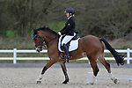 Class 7. Elementary 44. Unaffiliated dressage. Brook Farm Training Centre. Essex. 19/03/2017. MANDATORY Credit Garry Bowden/Sportinpictures - NO UNAUTHORISED USE - 07837 394578