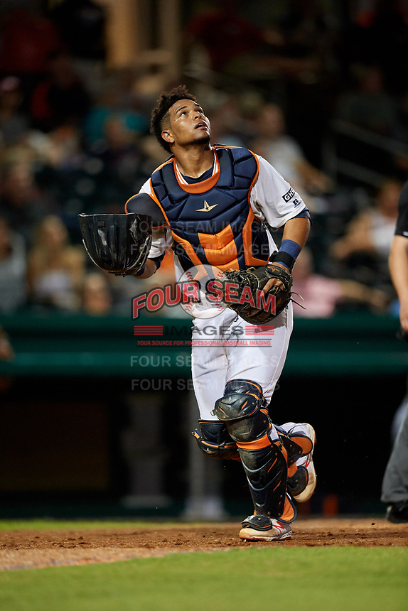 Bowling Green Hot Rods catcher Ronaldo Hernandez (24) tracks a pop up during a game against the Peoria Chiefs on September 15, 2018 at Bowling Green Ballpark in Bowling Green, Kentucky.  Bowling Green defeated Peoria 6-1.  (Mike Janes/Four Seam Images)