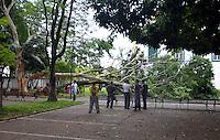 SÃO PAULO,SP - 29.11.2015 - ÁRVORE-QUEDA - Uma árvore de grande porte, caiu na área comum do Museu de Arte Sacra de São Paulo, localizada na Avenida Tiradentes, região central da cidade. Segundo funcionários do local, a queda ocorreu na madrugada desse domingo (29), devido à chuva. Não houve vítima. (Foto: Eduardo Carmim/Brazil Photo Press)