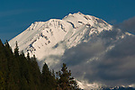 Cloud and trees below Mount Shasta volcano, California
