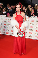 Amanda Mealing<br /> at the National TV Awards 2017 held at the O2 Arena, Greenwich, London.<br /> <br /> <br /> &copy;Ash Knotek  D3221  25/01/2017