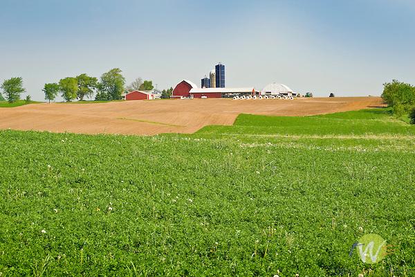 Farmscape. Missaukee County, MI..
