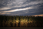 Kenneth Jarecke: Nebraska Farms