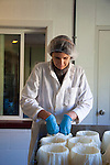 Gianaclis Caldwell and the cheesemaking process.