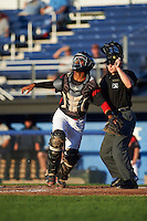 Batavia Muckdogs catcher Pablo Garcia (7) keeps his eyes on a popup in front of umpire John Budka during a game against the Hudson Valley Renegades on August 1, 2016 at Dwyer Stadium in Batavia, New York.  Hudson Valley defeated Batavia 5-1. (Mike Janes/Four Seam Images)