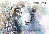 Simon, REALISTIC ANIMALS, REALISTISCHE TIERE, ANIMALES REALISTICOS, innovative, paintings+++++A_ValerieDeRozarieux_Ram,GBWR257,#a#, EVERYDAY