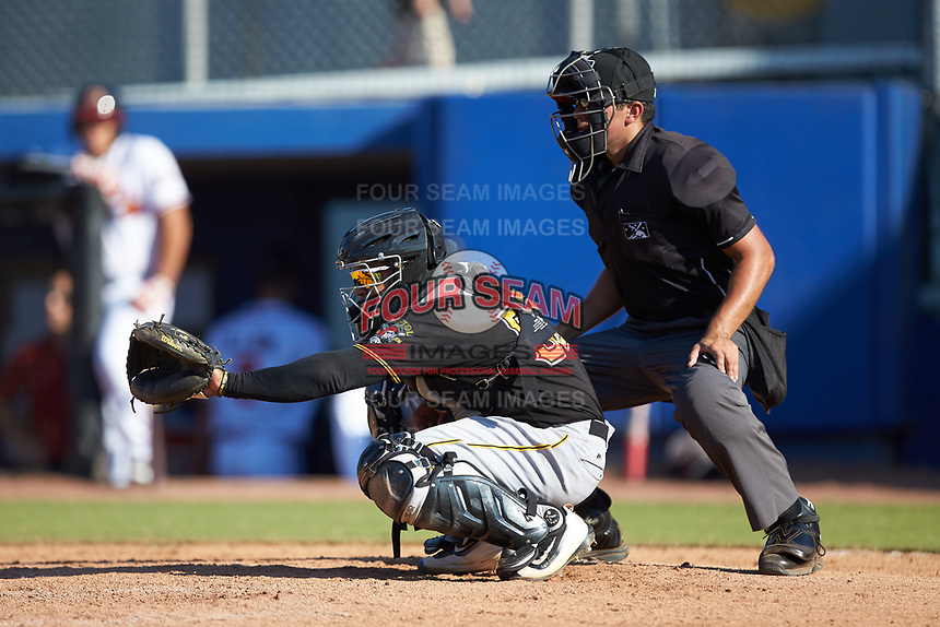 Bristol Pirates catcher Gabriel Brito (52) sets a target as home plate umpire Justin Juska looks on during the game against the Danville Braves at American Legion Post 325 Field on July 1, 2018 in Danville, Virginia. The Braves defeated the Pirates 3-2 in 10 innings. (Brian Westerholt/Four Seam Images)