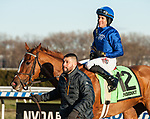 December 7, 2019: Lake Avenue, ridden by Junior Alvarado, wins the 2019 running of the G2 Demoiselle at Aqueduct Racecourse in South Ozone Park, NY. Sophie Shore/ESW/CSM