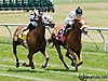 Native Wave winning at Delaware Park on 6/22/13