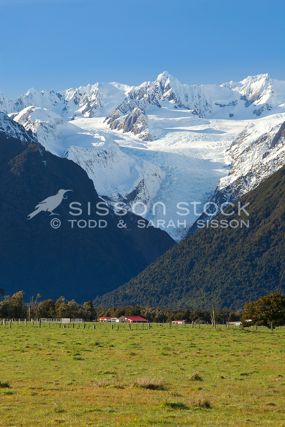 Farmland and farm buildings, Fox Glacier on the West Coast, South Island, New Zealand