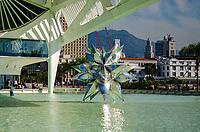 Rio de Janeiro (RJ), 27/07/2019 - Turismo no Rio de Janeiro - Vista do Museu do Amanhã na Praça Mauá no centro do Rio de Janeiro neste sabado, 27 (Foto: Vanessa Ataliba/ Brazil Photo Press)
