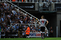 A frustrated Dwight Gayle of Newcastle United during Newcastle United vs Tottenham Hotspur, Premier League Football at St. James' Park on 13th August 2017