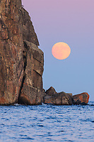 &quot;Cold Supermoon Rising&quot;<br />
