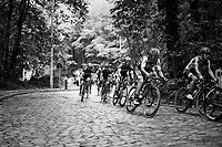working the cobbles<br /> <br /> 97th Brussels Cycling Classic (1.HC)<br /> 1 Day Race: Brussels &gt; Brussels (201km)