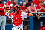 26 February 2019: Washington Nationals catcher Kurt Suzuki in action during a Spring Training game against the St. Louis Cardinals at the Ballpark of the Palm Beaches in West Palm Beach, Florida. The Nationals fell to the visiting Cardinals 6-1 in Grapefruit League play. Mandatory Credit: Ed Wolfstein Photo *** RAW (NEF) Image File Available ***