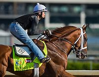 Golden Soul, trained by Dallas Stewart, during morning workouts for the Kentucky Derby at Churchill Downs in Louisville, Kentucky on April 30, 2013.