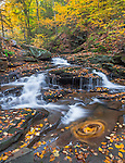 Ricketts Glen State Park, PA: Small braiding falls on Kitchen Creek in autumn