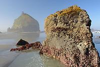Minus tide at Houda Point Beach<br /> Trinidad Coastal Land Trust<br /> Humboldt County<br /> Trinidad, California