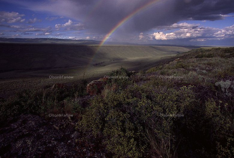 A clearing thundershower creates striking afternoon light and a double rainbow over sage brush covered lands in the West.