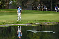 Danny Willett (GBR) looks for his ball he hit in the water on 6 during round 2 of the World Golf Championships, Mexico, Club De Golf Chapultepec, Mexico City, Mexico. 2/22/2019.<br /> Picture: Golffile | Ken Murray<br /> <br /> <br /> All photo usage must carry mandatory copyright credit (© Golffile | Ken Murray)