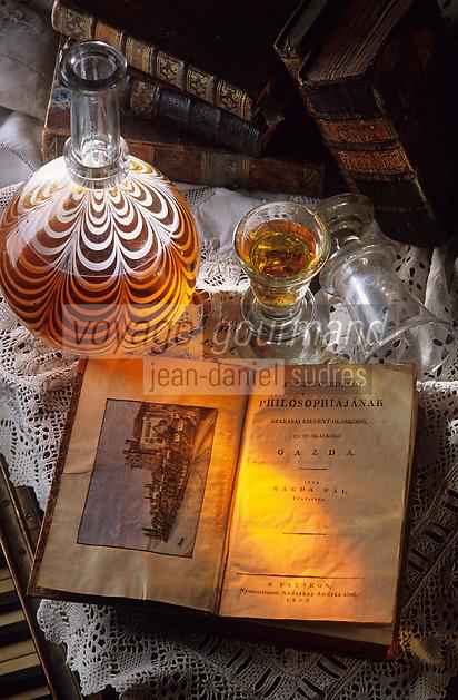 Europe/Hongrie/Tokay/Sarospatak: Musée Rakoczi - Livre de philosophie de 1833 - Gravure du chateau de Sarospatak - Verrerie 18eme